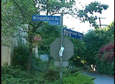 barbara richardson wonderland - photo #36