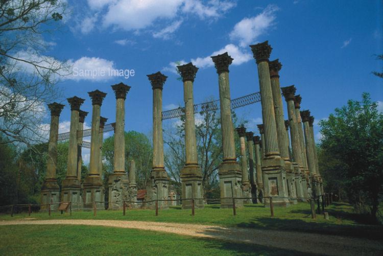 The Windsor Ruins In Mississippi Wonderland1981 The