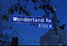 wonderland27
