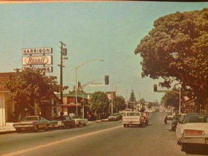 Fallbrook, CA. 1976.
