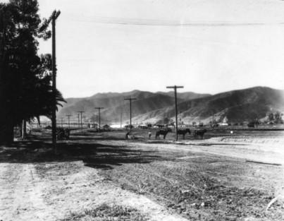 Sunset Blvd. 1905