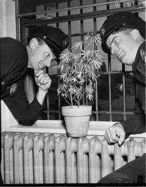 Van Nuys cops goofing around, 1951.