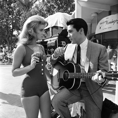 Ann and Elvis.