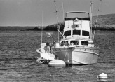 """The day after the death of Natalie Wood, 1981. Boat is named """"Splendour"""""""